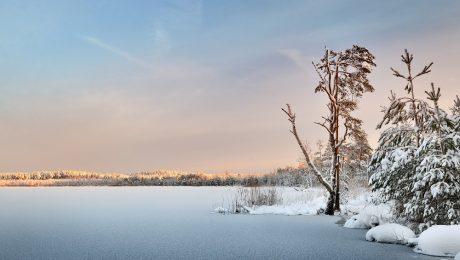 Frozen Lake Driving