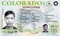 Colorado License