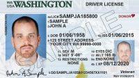 Washington Drivers license