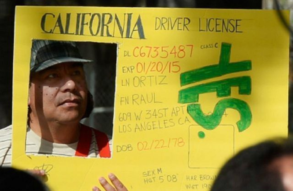 licenses for the undocumented