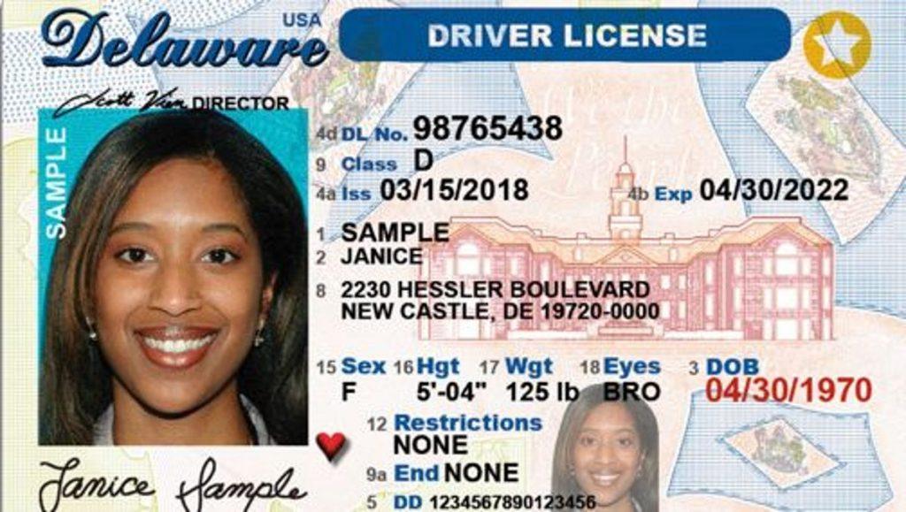 Delaware license