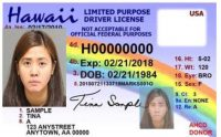 Hawaii drivers license