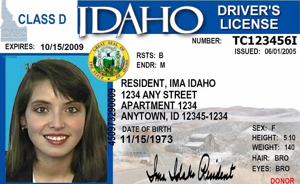 Idaho Drivers Ed