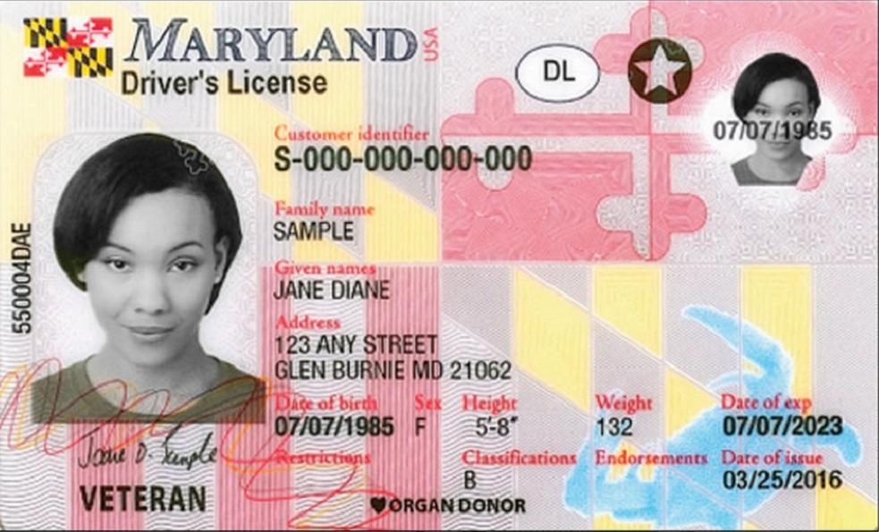 Maryland Drivers Ed