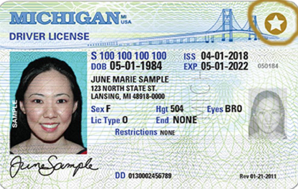 Michigan Drivers Ed