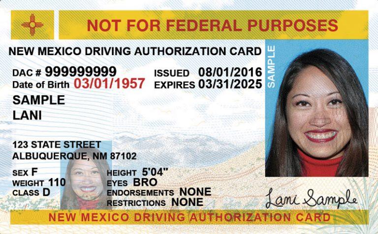 New Mexico drivers ed