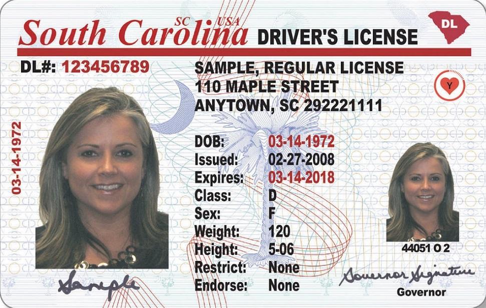 South Carolina Drivers Ed