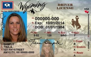 Wyoming drivers ed
